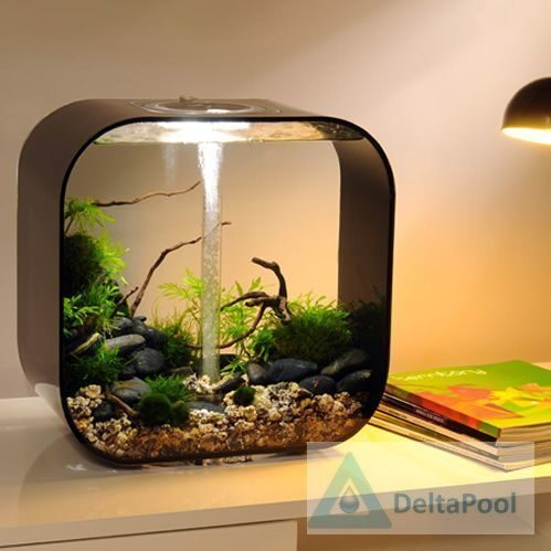 Бибенко гв, рижская ал комнатные аквариумы